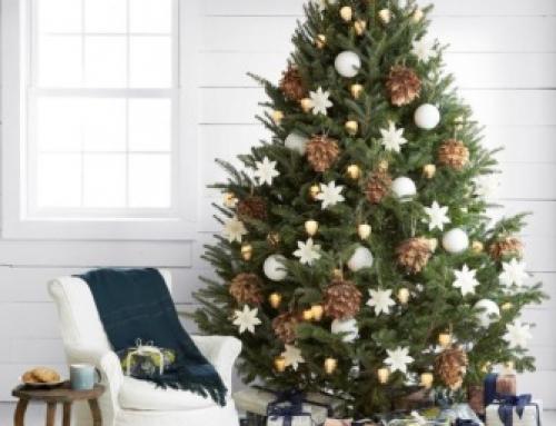 ¿Cuál es  tu deseo estas navidades?